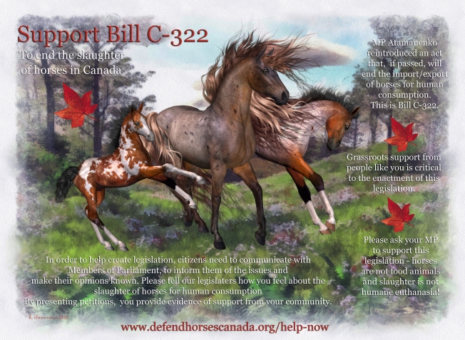 Please support Bill C-322 to end horse slaughter in Canada