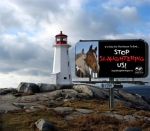 What`s a PEI lighthouse without an anti-slaughter message point?