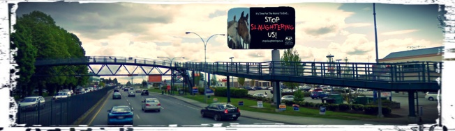Port Coquitlam Billboard Site