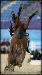 2012 Modern Pentathlon - Shearwater Oscar gets pulled over backwards by rider